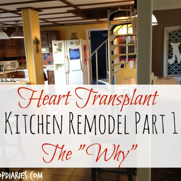 Why We Decided to Gut Our Kitchen