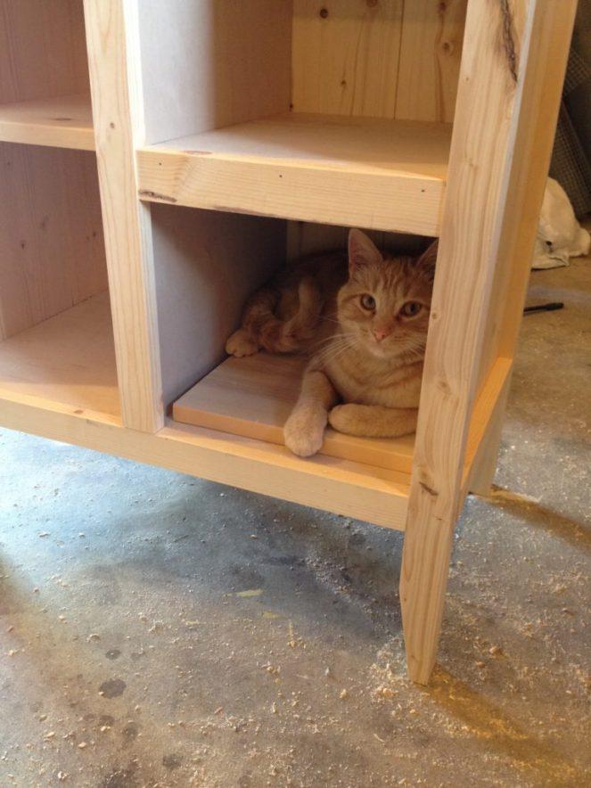 Orange Baby in cabinet
