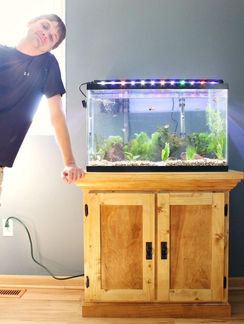 Ordinaire How To Build A DIY Aquarium Cabinet Stand