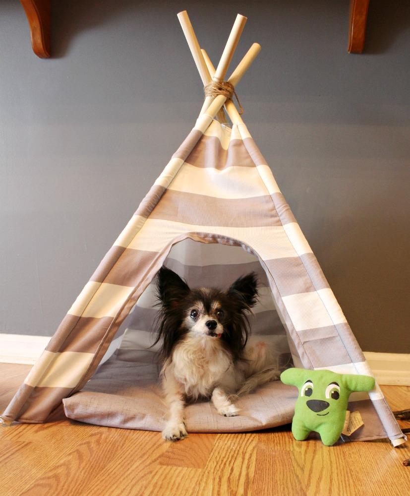 & DIY Dog Tent