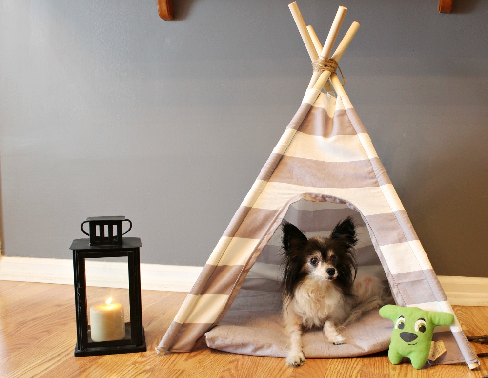 How to easily sew a DIY dog tent with striped or patterned fabric! Super easy sewing tutorial for beginners. Super cute pet bed idea!