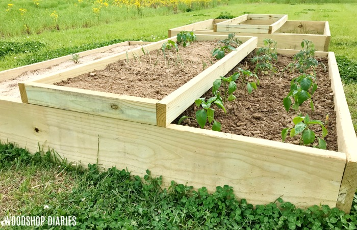 How to Build Your Own DIY Raised Garden Bed --In Just a ...