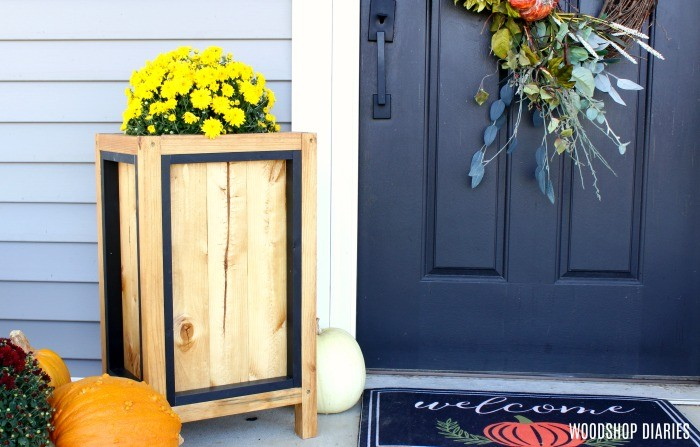 DIY Planter Box with black trim