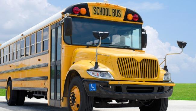 School bus_45599