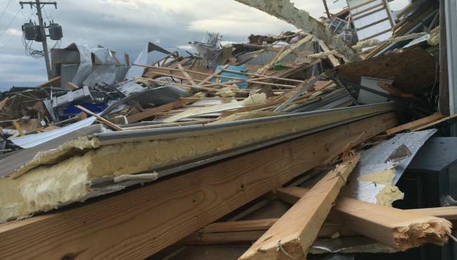 true blue blueberry farm Bangor storm damage 082016_239791