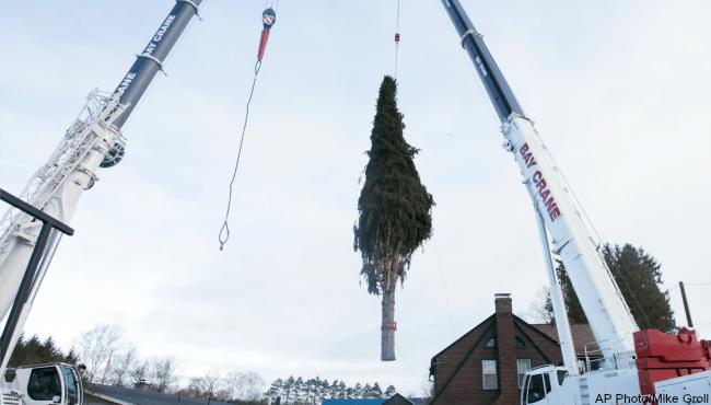 rockefeller-christmas-center-tree-111016_260066