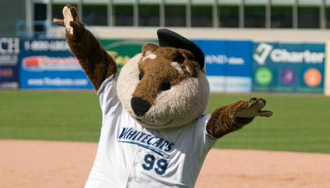 West Michigan Whitecaps generic_407454