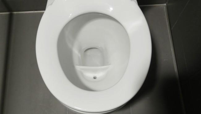 toilet generic AP 052418_1527154898235.jpg.jpg