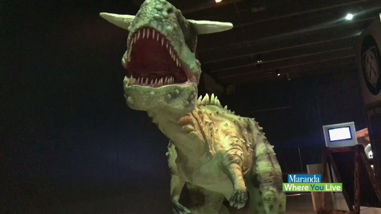 Interactive fun for the whole family from the Grand Rapids Public Museum
