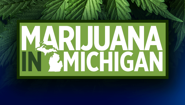 Marijuana in Michigan 650x370_1543595269871.png.jpg