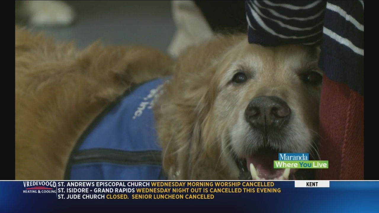 Benefits_of_a_therapy_dog_9_20190116171738