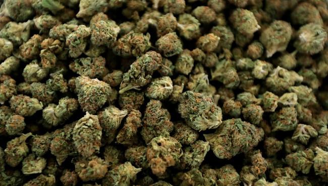 generic marijuana AP 052419 3_1558689248841.jpg.jpg