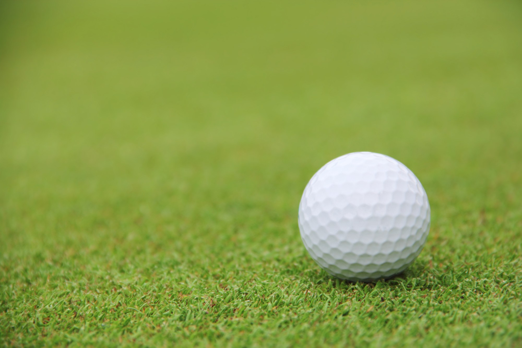 Generic golf ball on course_22563