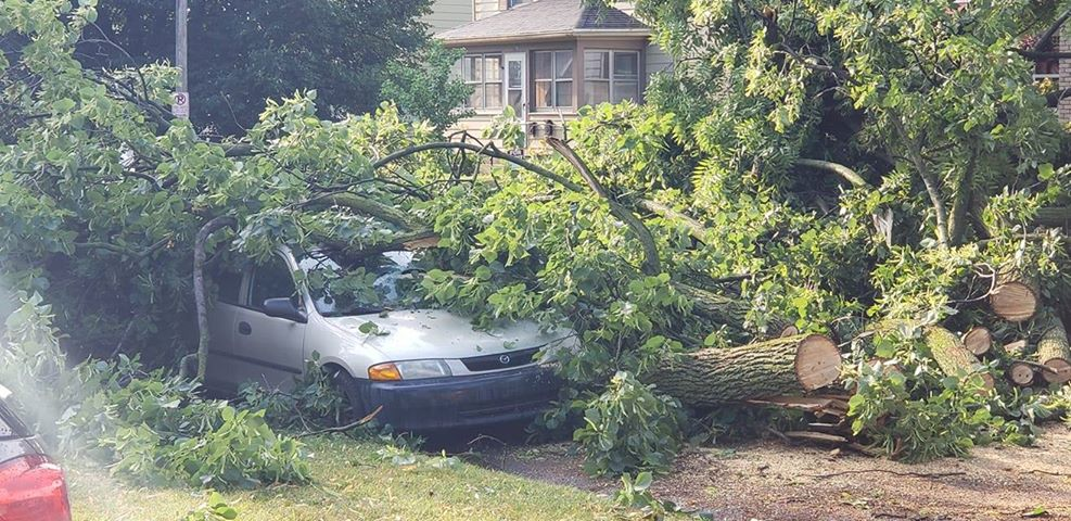 A car with fallen trees on top of it near Grand Avenue NE and Crescent Street NE in Grand Rapids. Courtesy of Justin DeFouw.