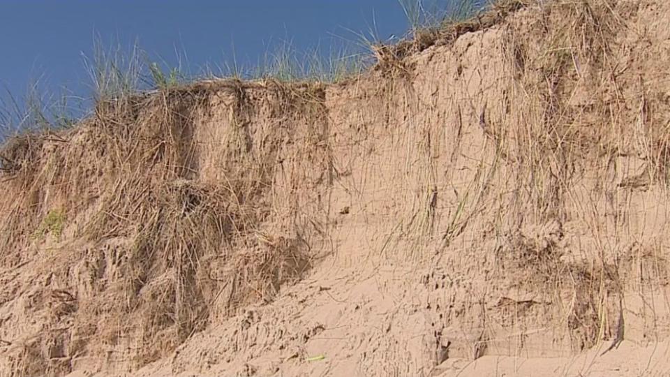 Tunnel Park sand dune