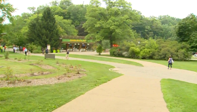 A photo of the John Ball Zoo after a gas leak on Aug. 20, 2019.