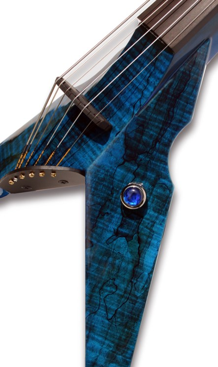 Blue Burl Exotic Top