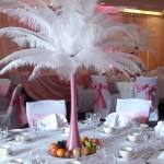 Ostrich feathers1