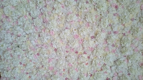 flower wall backdrop hire