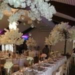colshaw hall blossom trees