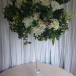 Extra-large-white-hydrangea-and-foliage-2