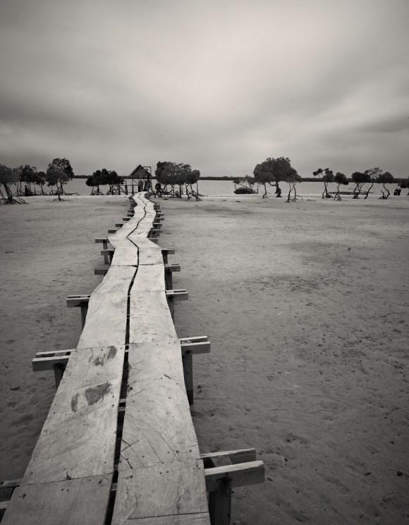 Lamu seaside