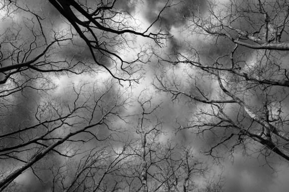 Look up again