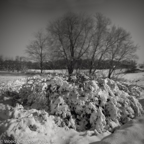 Early winter storm