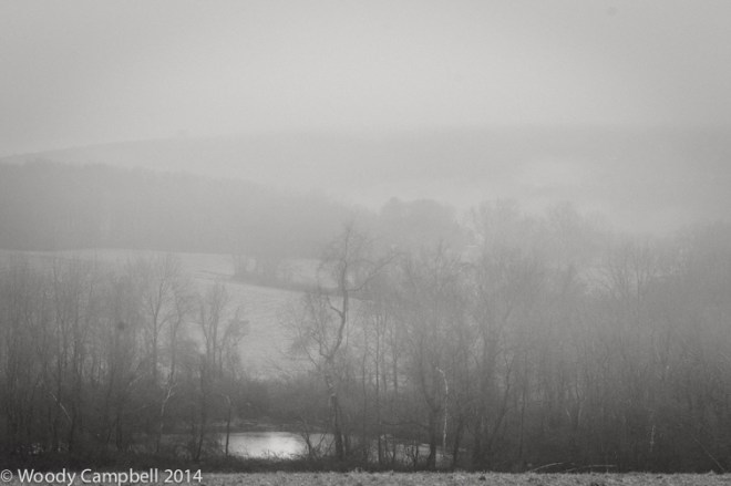 Fog of peace
