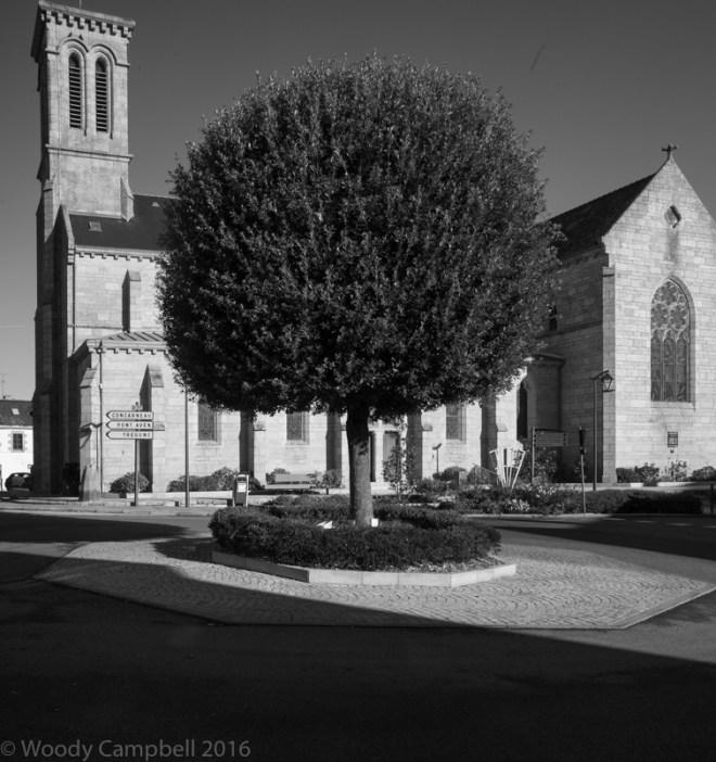 Magrit tree