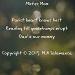 Mister Mom