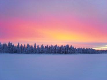 Husky Safari Finnish Lapland