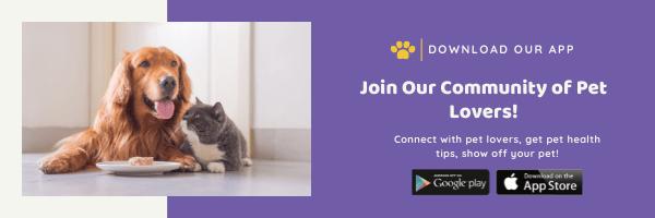 Woofline Pets App