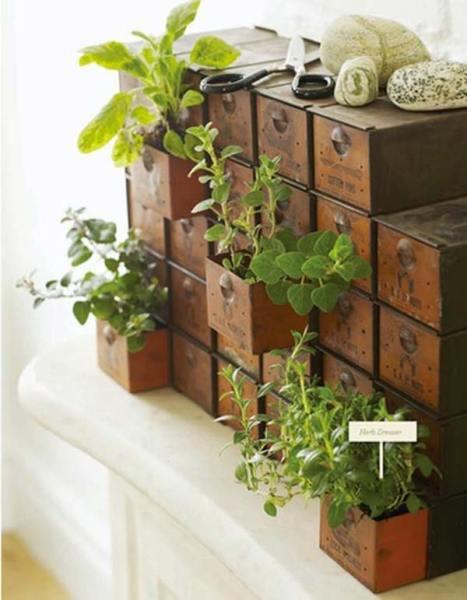 indoor herb garden 26 Mini Indoor Garden Ideas to Green Your Home - Amazing