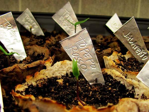 garden-marker-ideas-1