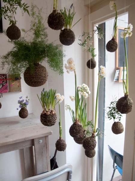 indoor hanging garden ideas Top 24 Awesome Ideas to Display Your Indoor Mini Garden