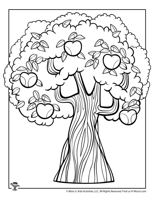 apple tree coloring pages # 40
