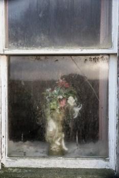 Scar House window