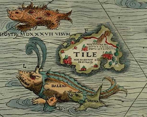 "Thule as Tile on the Carta Marina of 1539 by Olaus Magnus, where it is shown located to the north west of the Orkney islands, with a ""monster, seen in 1537"", a whale (""balena""), and an orca nearby."