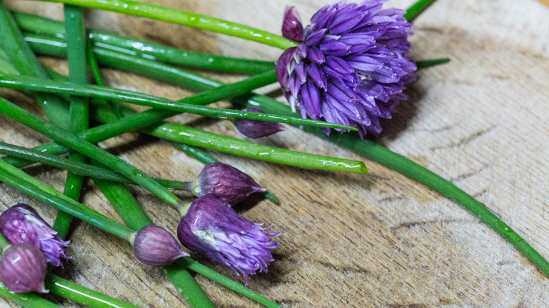 Chives to garnish