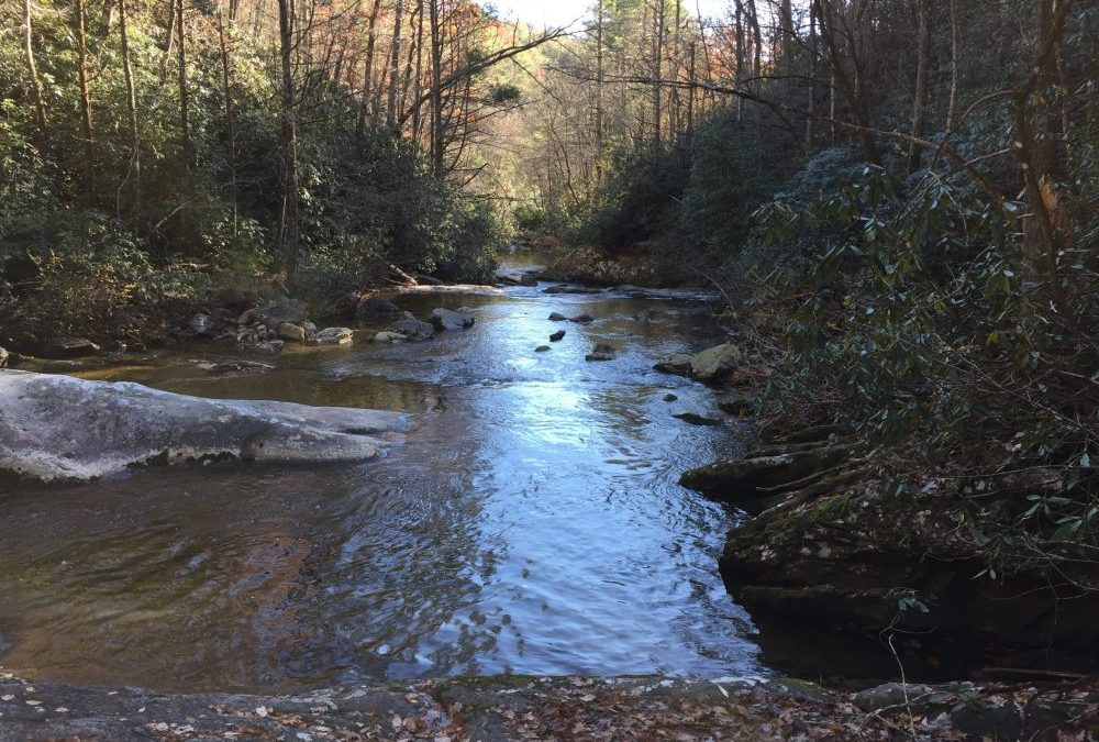 The Healing Power of Moving Water