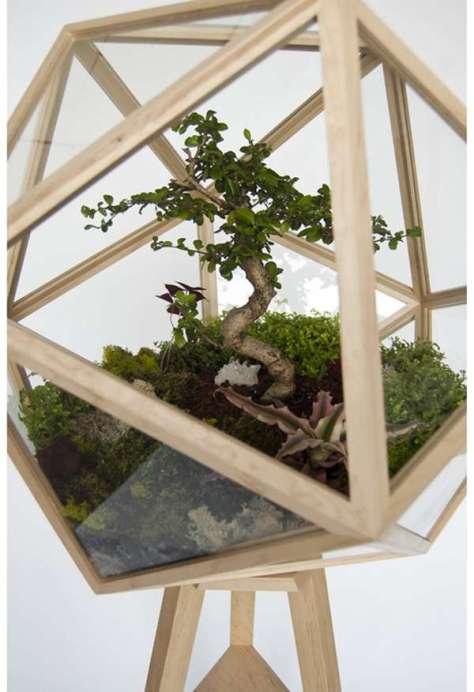 een terrarium voor je bonsai boom