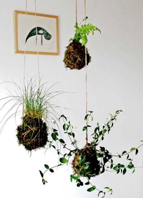 Een DIY plan om zelf stringplants te maken via Designsponge