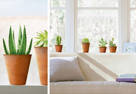 raamsticker cactus via nouvellus images