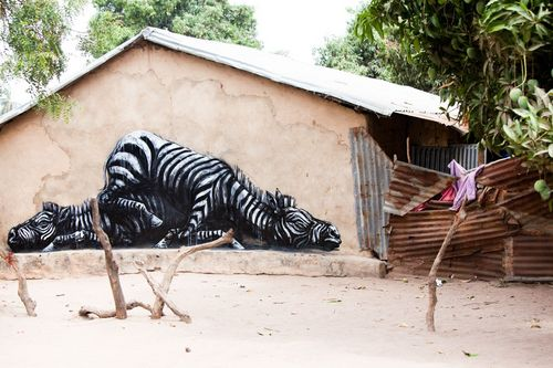 ROA-2011-The%20Gambia-WOW-picture%20by%20Jonx-IMG_2750.jpg