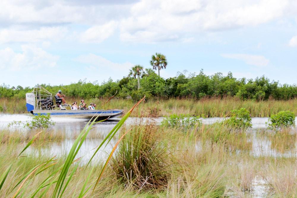 Everglades Grassland Airboat Tour Wootens Everglades
