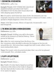 Animales con mas seguidores en Twitter