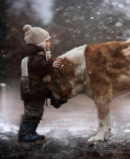Niño en la nieve con perro fotografía