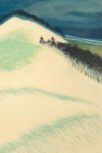 Leon Spillieart Dunes