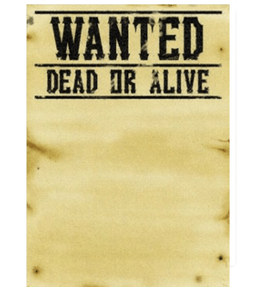 7 Wanted Poster Templates Excel PDF Formats – Template for a Wanted Poster